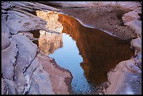 Cliffs reflected in pool, North Canyon. Grand Canyon National Park ( color)