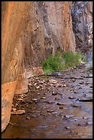 Rock walls and stream, Clear Creek gorge. Grand Canyon National Park ( color)