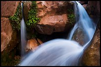 Double spouted waterfall, Clear Creek. Grand Canyon National Park ( color)