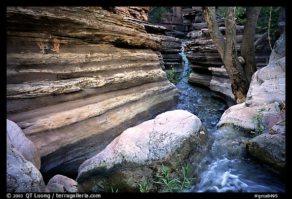 Entrance of Deer Creek Narrows. Grand Canyon National Park (color)