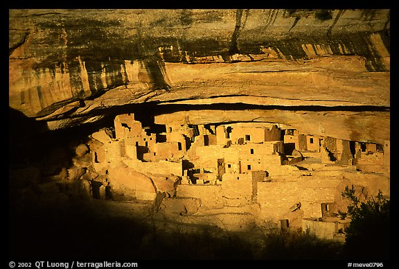 Cliff Palace, largest Anasazi cliff dwelling, afternoon. Mesa Verde National Park, Colorado, USA.