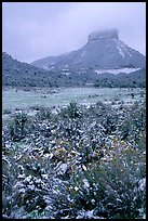 Fresh snow on meadows and Lookout Peak. Mesa Verde National Park ( color)