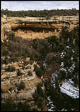 Cliff Palace seen from across valley in winter. Mesa Verde National Park ( color)