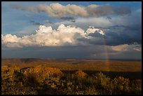 Rainbow and thunderstorm clouds over mesa. Mesa Verde National Park ( color)