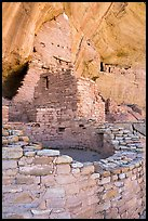 Kiva and dwellings, Long House, Wetherill Mesa. Mesa Verde National Park ( color)