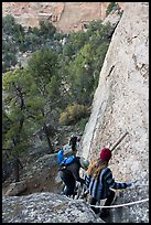 Tour participants negotiate cliff. Mesa Verde National Park ( color)