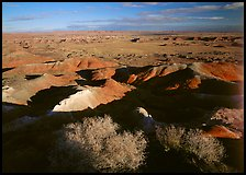 Ridges over badlands of Painted Desert, morning. Petrified Forest National Park ( color)