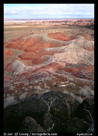 Mud, sandstone and volcanic ash color  painted desert, morning. Petrified Forest National Park, Arizona, USA.