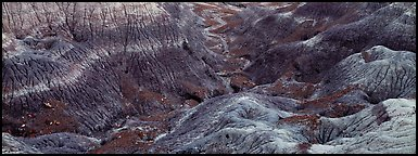 Multi-hued badlands. Petrified Forest National Park (Panoramic color)