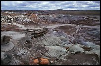 Petrifieds logs and Blue Mesa, mid-day. Petrified Forest National Park, Arizona, USA.