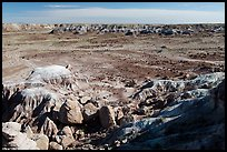 Valley covered with petrified wood, Jasper Forest. Petrified Forest National Park ( color)