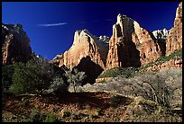 Court of the Patriarchs sandstone towers, morning. Zion National Park, Utah, USA.