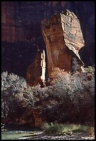 The Pulpit, Zion Canyon. Zion National Park, Utah, USA.