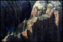 Cliffs seen from above near Angel's landing. Zion National Park, Utah, USA. (color)