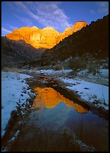 Pine Creek and Towers of  Virgin, sunrise. Zion National Park, Utah, USA.