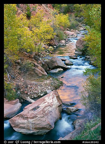 Boulders and Virgin River in  fall. Zion National Park (color)