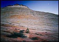 Checkerboard Mesa seen from base and moon. Zion National Park, Utah, USA.