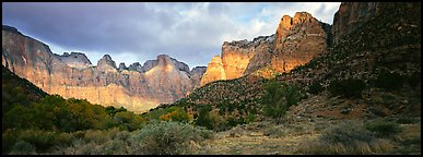 Amphitheater of tall towers. Zion National Park (Panoramic color)