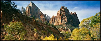 Zion Canyon scenery. Zion National Park (Panoramic color)
