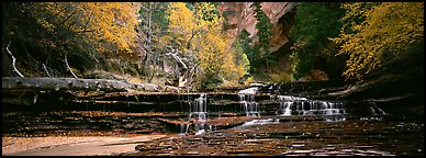 Autumn landscape with terraces flowing over creek. Zion National Park (Panoramic color)
