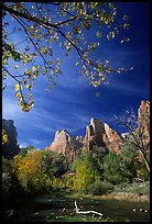 Court of the Patriarchs and Virgin River, mid-day. Zion National Park, Utah, USA.