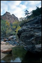 Left Fork of the North Creek. Zion National Park ( color)