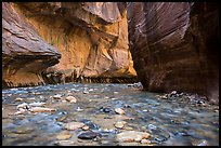 Bend of the Virgin River in the Narrows. Zion National Park ( color)