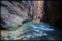 Narrows of the North Fork of the Virgin River. Zion National Park ( color)