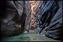 Soaring dark walls, the Narrows. Zion National Park ( color)