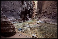 The Narrows at the Orderville confluence. Zion National Park ( color)