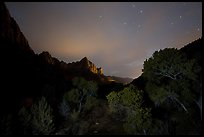 Trees and Watchman at night. Zion National Park ( color)