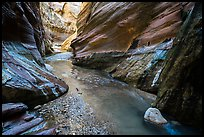 Stream flowing, Orderville Canyon. Zion National Park ( color)