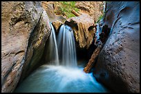 Waterfall and jammed log, Orderville Canyon. Zion National Park ( color)