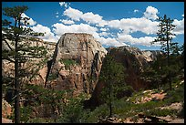 Great White Throne and Angels Landing from West Rim. Zion National Park ( color)