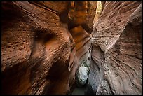 Red walls of Keyhole Canyon and white chockstone. Zion National Park ( color)