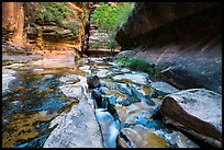 Stream funelling in tight watercourse, Left Fork. Zion National Park ( color)