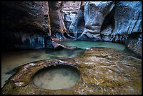 Water flowing over pools and fluted walls, Subway. Zion National Park ( color)