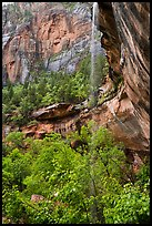 Waterfall above Lower Emerald Pool. Zion National Park ( color)