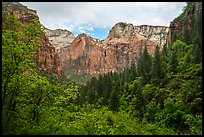 Upper Emerald Pool greenery frames Zion Canyon. Zion National Park ( color)