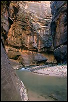 Riverbend in the Narrows. Zion National Park ( color)