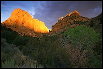 Kolob Canyons at sunset. Zion National Park, Utah, USA.
