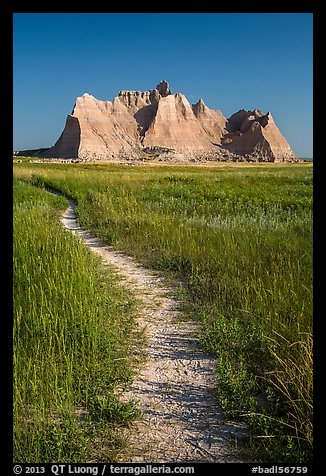 Trail winding in prairie next to butte. Badlands National Park, South Dakota, USA.