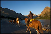 Horses on the shores of Swiftcurrent Lake, sunrise. Glacier National Park, Montana, USA. (color)