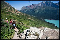 Women hiking on the Grinnell Glacier trail. Glacier National Park, Montana, USA.