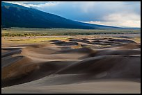 Dune field and valley, late afternoon. Great Sand Dunes National Park and Preserve ( color)