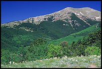 Sangre de Cristo Mountains near Medano Pass in summer. Great Sand Dunes National Park and Preserve ( color)