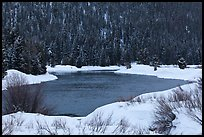 Snake River and forest covered hill in winter. Grand Teton National Park ( color)