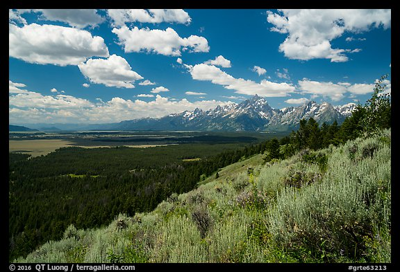 Jackson Hole plain and Tetons from Signal Mountain. Grand Teton National Park (color)