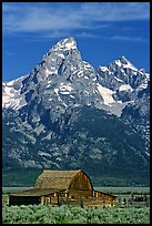 Historic Moulton Barn and Grand Tetons, morning. Grand Teton National Park ( color)