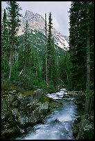 Cascade Creek and Tetons. Grand Teton National Park, Wyoming, USA. (color)
